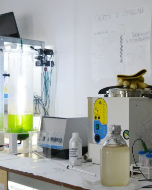 Laboratory accessories for microalgae