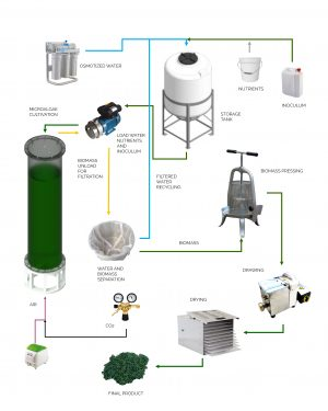 Manual photobioreactors system