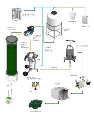 Semi-automatic photobioreactor system